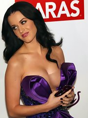 Katy Perry posing topless