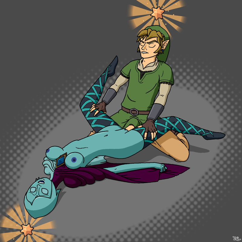 752649 - Fi Legend_of_Zelda Link Skyward_Sword Val.png