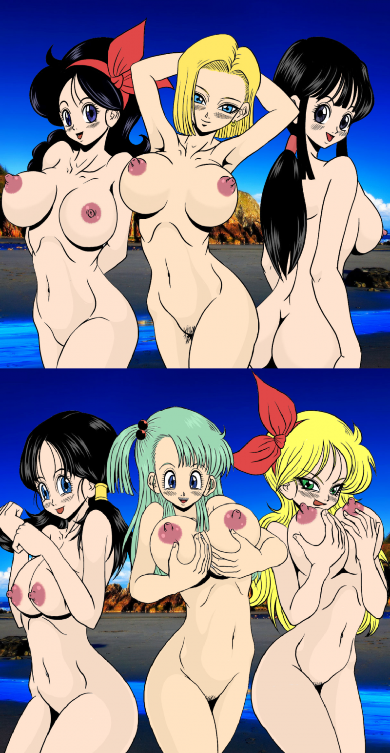 1427709 - Android_18 Bulma_Briefs Chichi Dragon_Ball_Z Launch Videl pyramid_house.png