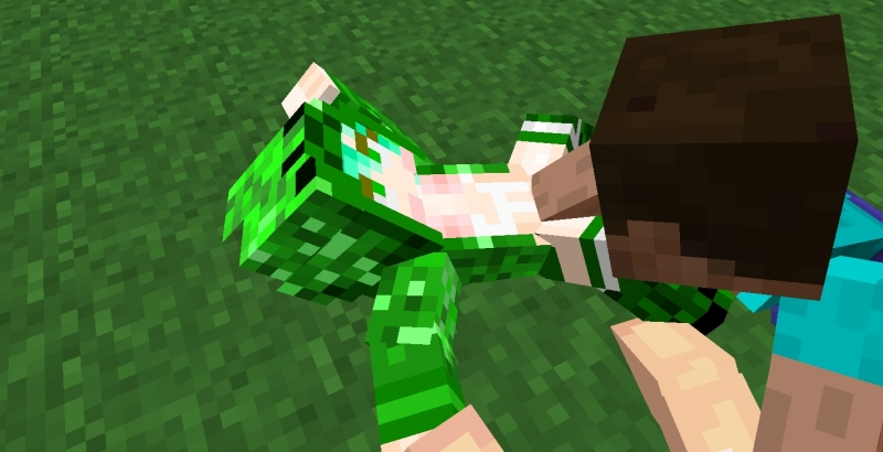 1022694 - Creeper Cupa Minecraft Steve.jpg