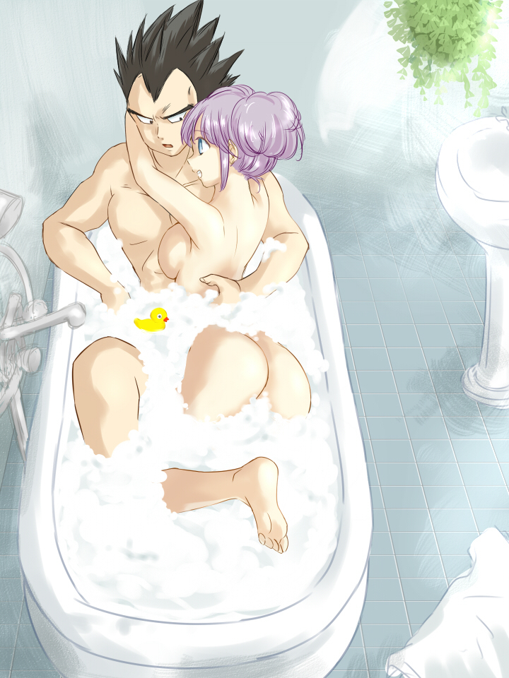 1676699 - Bulma_Briefs Dragon_Ball_Z Vegeta.jpg