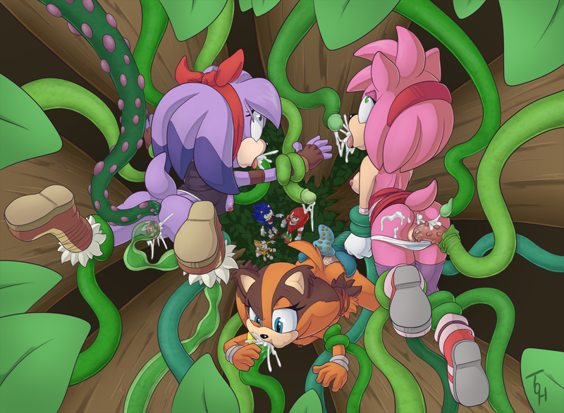 1534772 - Amy_Rose Perci Sonic_Boom Sonic_Team Sticks_the_Badger the_other_half.png