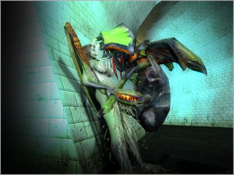 381492 - Antlion Half-Life Half-Life_2 Headcrab gmod lamarr.jpg