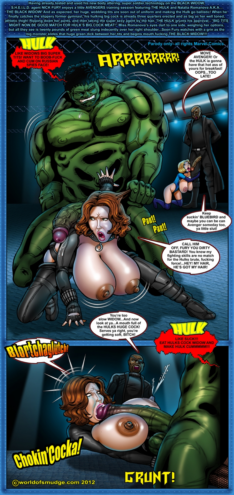 Hulk 967428 - Avengers Black_Widow BlueBird Hulk Marvel Nick_Fury Smudge.jpg