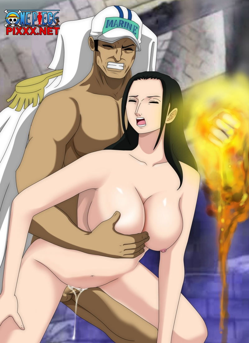 One Piece Porn Cartoon