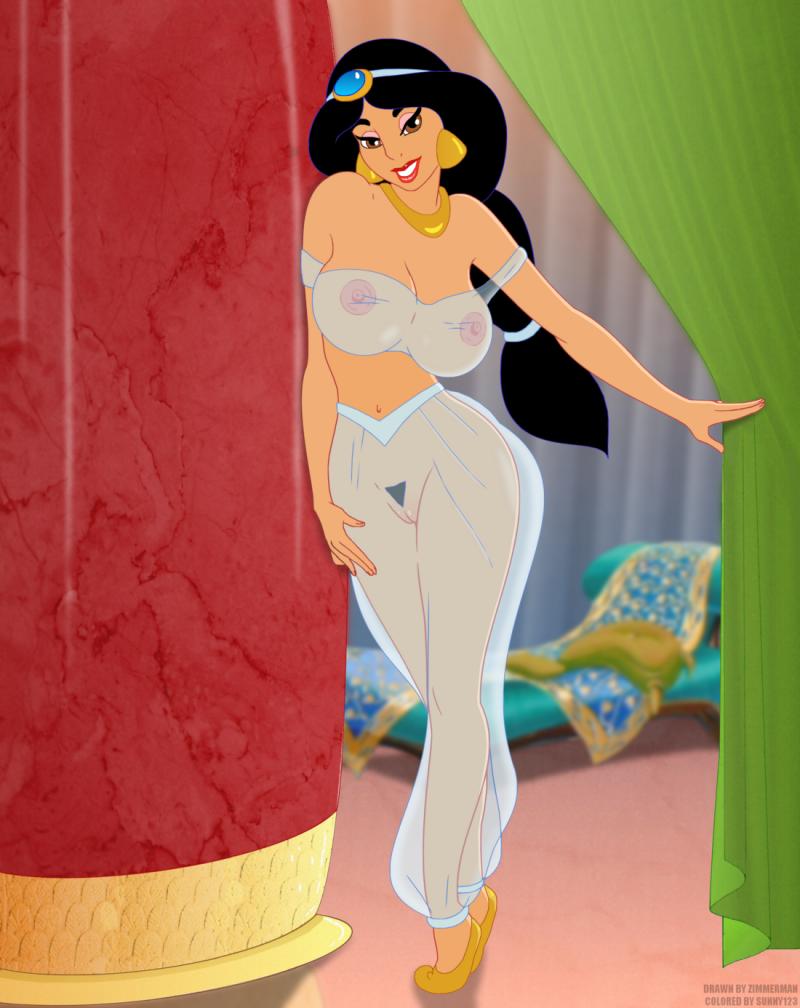 Princess Jasmine 1320059 - Aladdin Jasmine Sunny123 Zimmerman.png