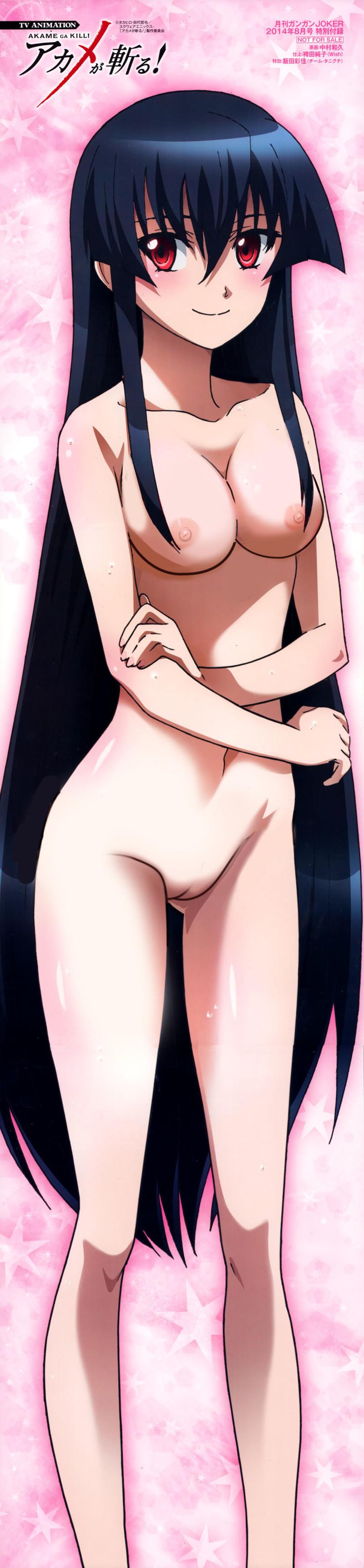 Akame Najenda Leone Chelsea Kurome Suzuka Esdeath Philip J. Fry Mez Tatsumi Mine 1415343 - Akame Akame_Ga_Kill! edit nekomate14.jpg
