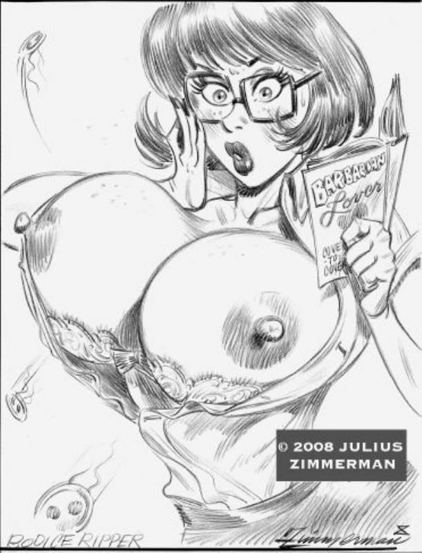 393270 - Scooby-Doo Velma_Dinkley Zimmerman.jpg