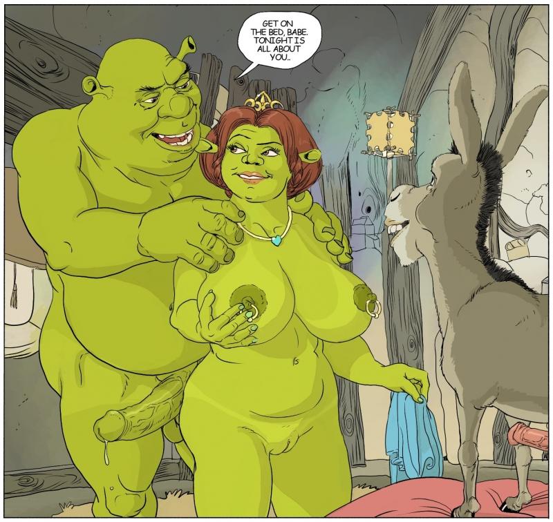 Fiona Shrek Donkey 329785 - Donkey Furronika Princess_Fiona Shrek.jpg