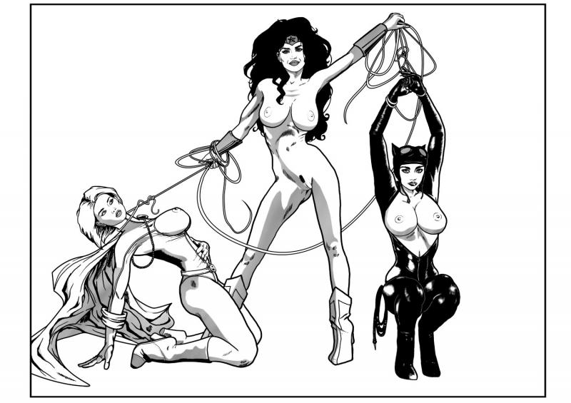 Wonder woman 1135516 - Catwoman DC Justice_League PlutonianKnight Power_Girl Wonder_Woman.jpg