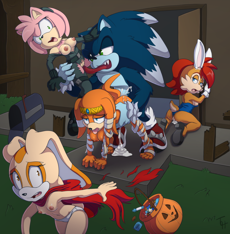 Sonic the Hedgehog Amy Rose Sally Acorn Tikal the Echidna Cream the Rabbit Link Debbie Thornberry Yoko Littner share_it_81b219883c837c210a41eb195690d9be