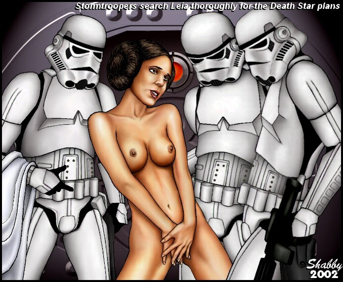 473_Stormtroopers_Search_Leia.jpg