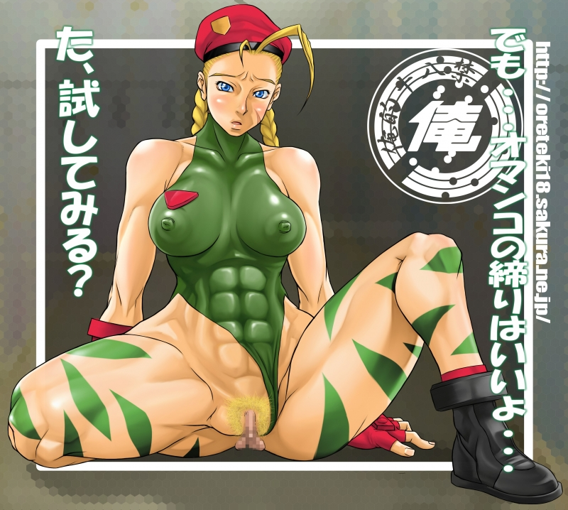 Street Fighter Porn Comic
