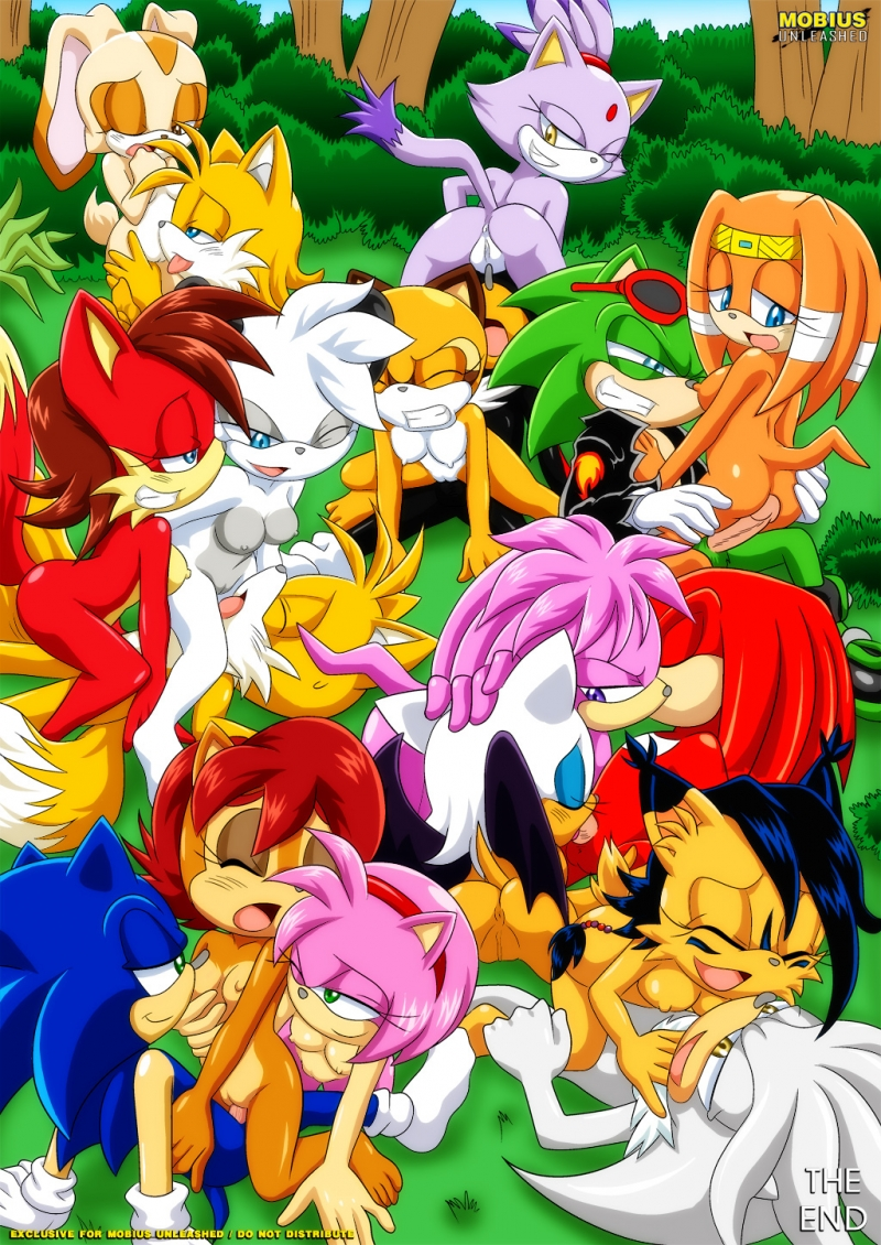 Sally Acorn Amy Rose Sonic the Hedgehog Knuckles the Echidna Tikal the Echidna Blaze the Cat Miles Prower aka Tails Cream the Rabbit Rouge the Bat