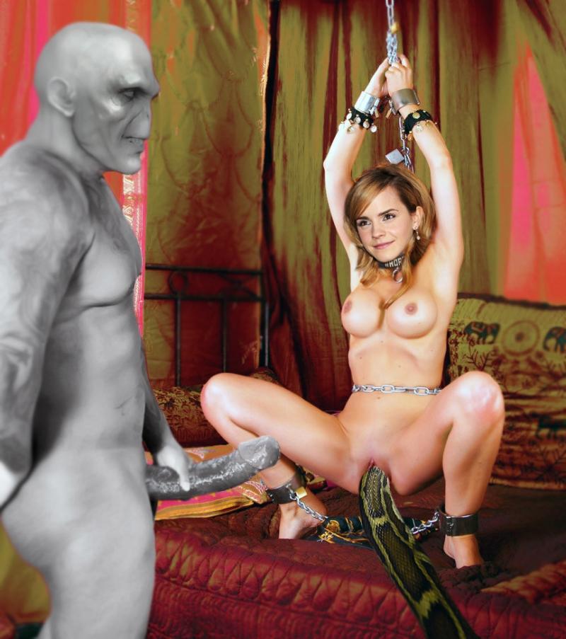 1170715 - Emma_Watson Harry_Potter Hermione_Granger Nagini Voldemort Zordanzyztem_(artist) fakes.jpg