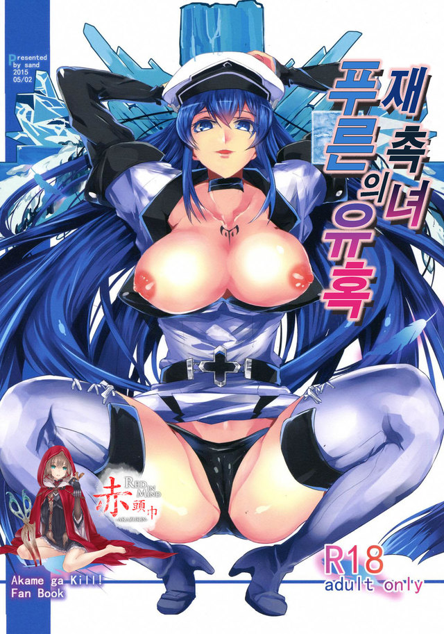 (COMIC1☆9) [Sand (Yuu)] Semeru Onna Ao no Yuuwaku (Akame ga Kill!) [Korean]