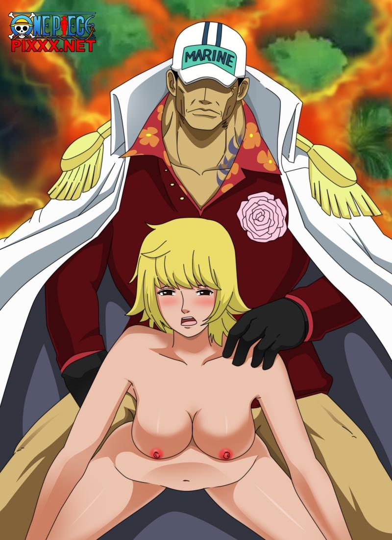 One Piece Tashigi Hentai