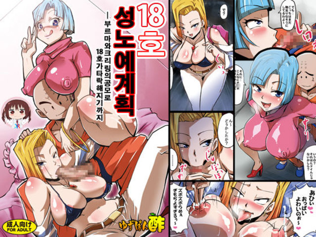[Yuzuponz (Rikka Kai)] Legal-gou Sei Dorei Keikaku -Bulma to Krillin no Kyoubou de Legal-gou ga Ochiru Made- (Dragon Ball Z) [Korean] [KYR] [Digital]