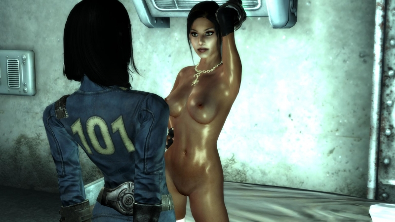 1065051 - Amata_Almodovar Fallout Fallout_3 Lone_Wanderer.jpg