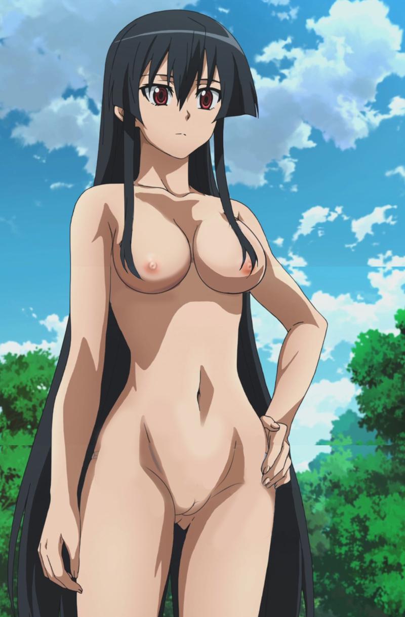 Susanoo Akame 1406873 - Akame Akame_Ga_Kill! nekomate14_edited.jpg