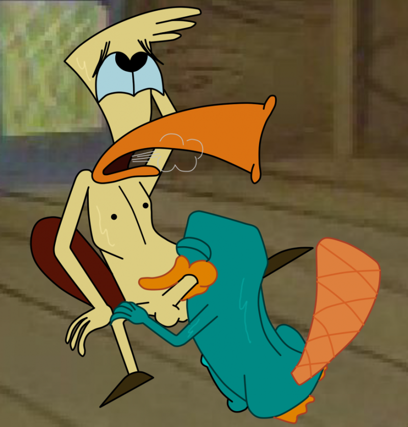 852734 - Camp_Lazlo Perry_the_Platypus Phineas_and_Ferb crossover edward.png