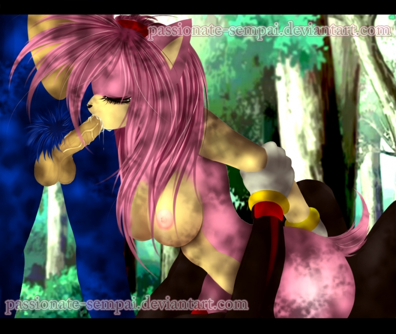 1385086 - Amy_Rose Shadow_the_Hedgehog Sonic_Team Sonic_The_Hedgehog passionate-sempai.jpg