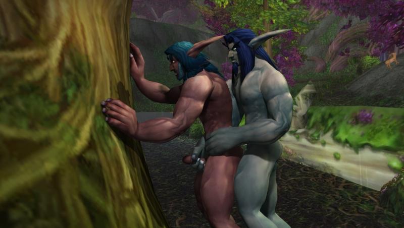 1426451 - Warcraft World_of_Warcraft cutiepie night_elf.jpg