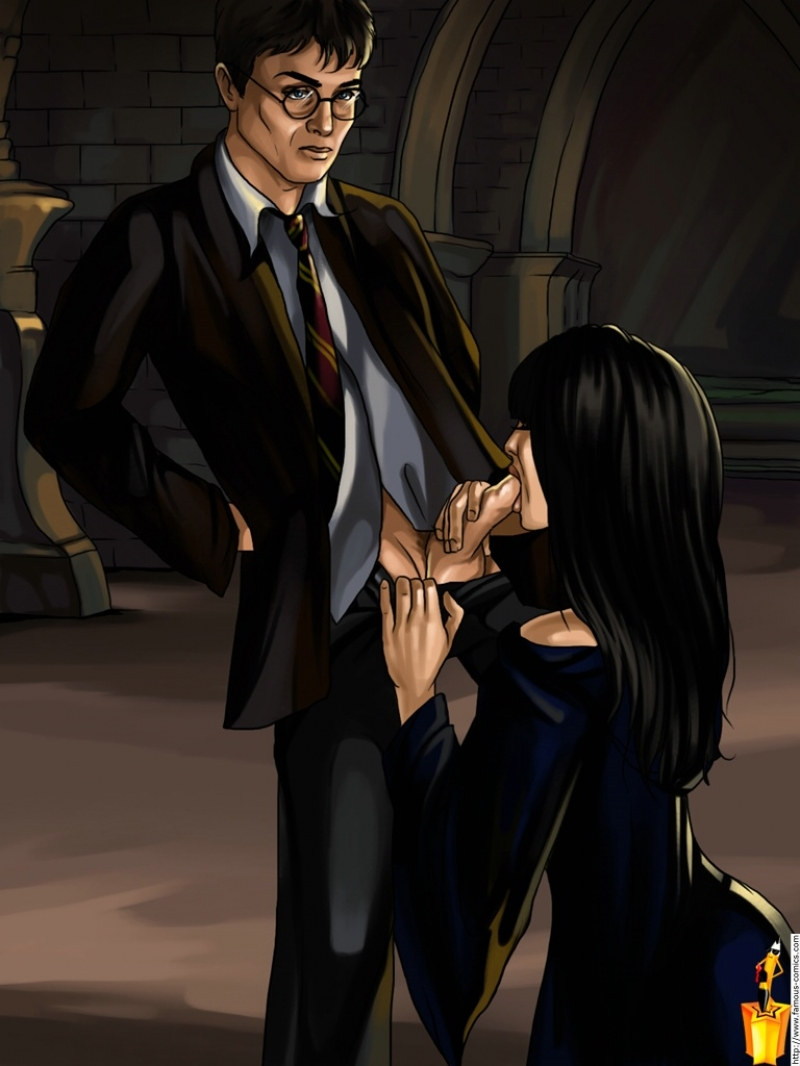 246608 - Cho_Chang Famous_Comics Harry_James_Potter Harry_Potter.jpg