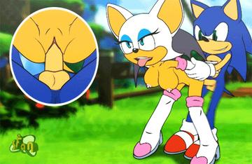 Sonic Hentai Porn GIF