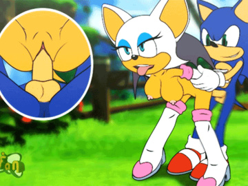 Rouge the Bat Sonic the Hedgehog 1539535 - Rouge_the_Bat Sfan Sonic_Team Sonic_The_Hedgehog animated.gif